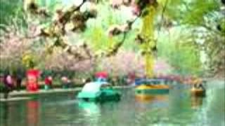 Most Beautiful Chinese Instrumental Music......the Beauty of PLUM BLOSSOMS !