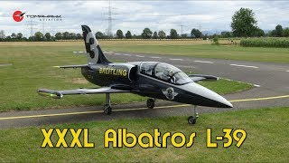 Best of XXXL Albatros L-39