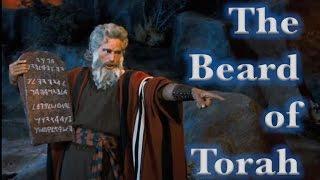 The Beard of Torah!