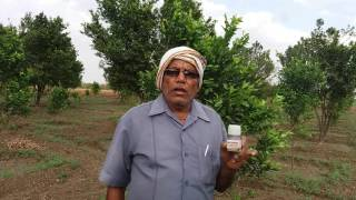 Hindi Language Success stories of waste decomposer National Centre of organic farming Ghaziabad