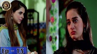 Zindaan Episode - 13 - 8th May 2017-  Top Pakistani Drama