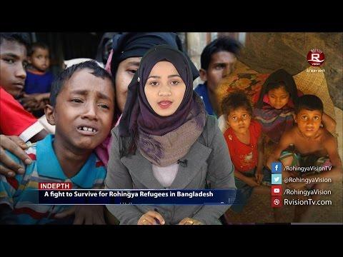 Rohingya Daily News 22 May 2017