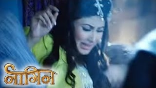 Naagin | 14th Feb 2016 | Shivanya Gets KIDDNAPPED & Gets SEXUALLY ASSAULTED | नागिन
