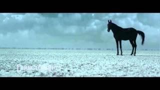 Heart Touching Song - Hamqadam