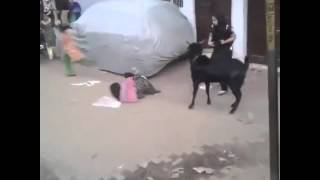 Funny video by Ahmed Mughal