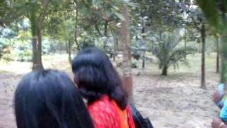 Tangail Rajbari