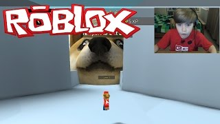 GET EATEN BY DOGE!! | Roblox | Kid Gaming