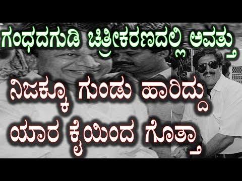 Xxx Mp4 ಗಂಧದಗುಡಿ ಸಿನಿಮಾ ಚಿತ್ರೀಕರಣದಲ್ಲಿ ಗುಂಡು ಹಾರಿಸಿದ್ದು ಯಾರು ಗೊತ್ತಾ Gandhadagudi Movie Real Incident Kannada 3gp Sex