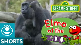 Elmo Visits the Zoo (Elmo at the Zoo #1)