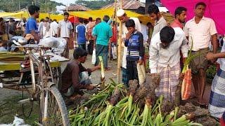 Biggest Village Kacha Bazar   Fresh Vegetables Market In Bangladeshi Local Village 2017