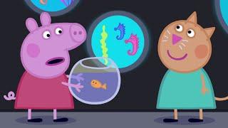 Peppa Pig English Episodes | Peppa goes to the Aquarium #PeppaPig
