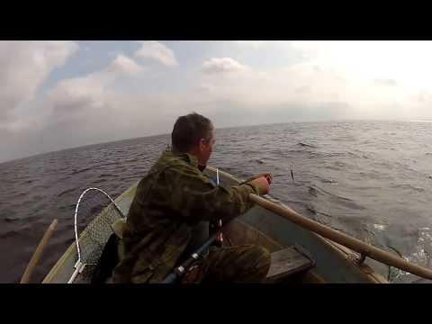 рыбалка с лодки на ладоге видео