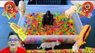 INDOVINA L'ANIMALE CHALLENGE CON I LIONS & CO. - Leo Toys