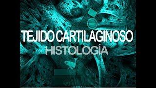 Tejido Cartilaginoso | Histología