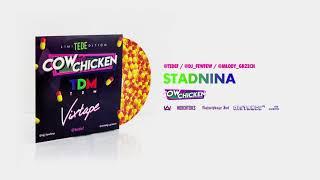 TEDE FEAT. COW & CHICKEN - STADNINA / TDM VIXTAPE