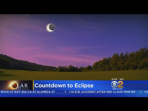 Animals Expected To React To Solar Eclipse