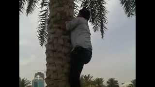 madina hot commedy in sharjah afeef