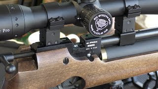 REVIEW: Air Arms S200 / CZ 200 Air Rifle - Squirrels Nuts @ 50 Yards