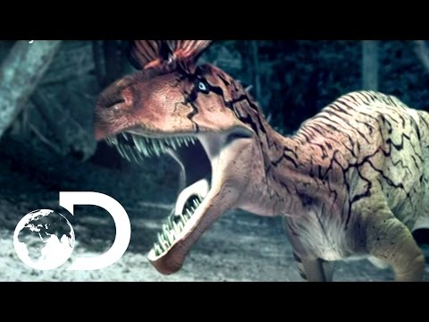 Cryolophosaurus Battle Reign of the Dinosaurs