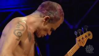 Red Hot Chili Peppers - Dark Necessities (Lollapalooza Chicago 2016)