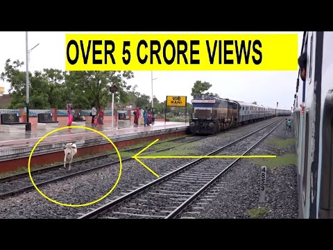 Xxx Mp4 Mighty Aravali Express Getting Cowed Down Honking All 3gp Sex