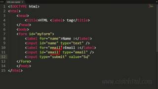 HTML label Tag