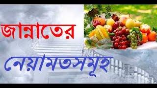 জান্নাতের নেয়ামতসমুহ- Bangla Waz by Shaykh Abdul Qayum
