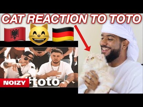 Xxx Mp4 ARAB AND CAT REACTION TO Noizy Feat Raf Camora Toto EXTREMELY FUNNY 3gp Sex