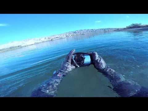 Found a sunken SeaDoo Oakleys Boat Motor and lots of sunglasses