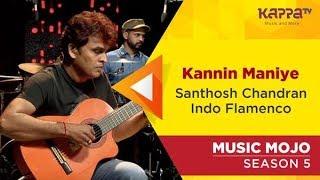 Santhosh Chandran Indo Flamenco - Music Mojo Season 5 - Kappa TV