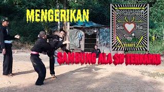 Psht malaysia Avrian sadis sambung