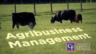 Agribusiness Management at CF