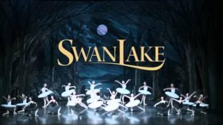SWAN LAKE PERTH TVC 30   NOW ON SALE V2