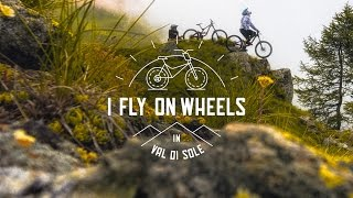 I fly on wheels, downhill mountain biking, Val di Sole, Trentino, Italy