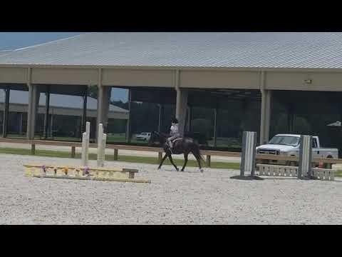Xxx Mp4 The Cool Kid Sister Riding Horses 3gp Sex
