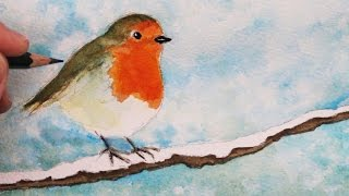 How to Draw and paint a Robin: Step by Step
