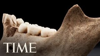 Cannibalism At Jamestown: Listening To The Bones | TIME