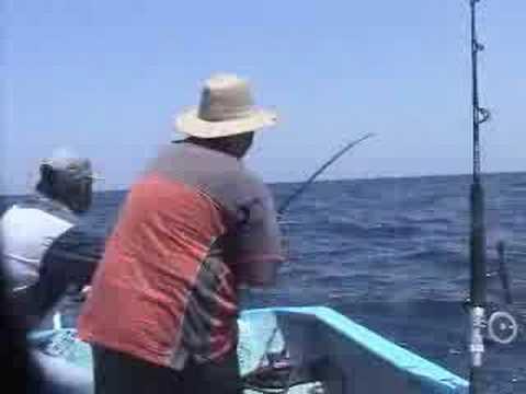 pesca jurel BCS
