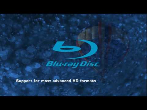 Xxx Mp4 Nvidia PureVideo HD 1080p Test 3gp Sex