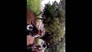 Jagdish natoj ki swagat relli