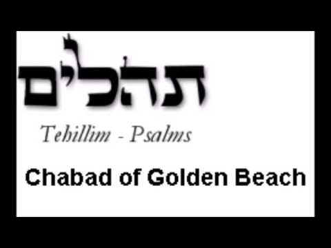 Psalm 35 (Tehillim 35)