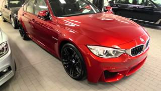 BMW M3: European Delivery & US Delivery