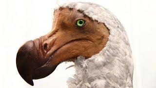 15 حيوانا ساهم الإنسان في انقراضها !!