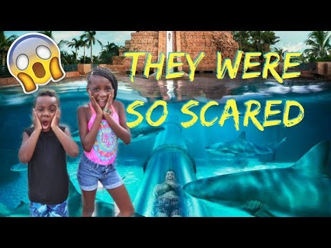 Xxx Mp4 WE TOOK OUR KIDS TO THE WORLD S BIGGEST WATERPARK IN THE BAHAMAS 3gp Sex