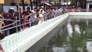 Bangladesh bishwanath