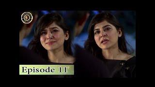 Teri Raza Episode 11 - 14th September 2017 - Sanam Baloch & Shehroz Sabzwari - Top Pakistan