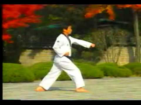 Xxx Mp4 3 Taekwondo Poomsae Taegeuk Sam Jang WTF 3gp Sex