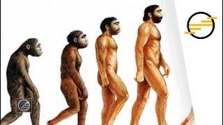 Érettségi 2018 - Biológia: Az evolúció mozgatórugói