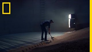 Drowning in Grain: A Look at the Hidden Dangers of Farming | Short Film Showcase