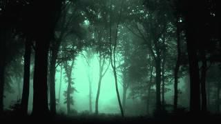 dark dubstep mix 15 2013